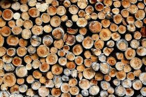 Dřevo do krbu